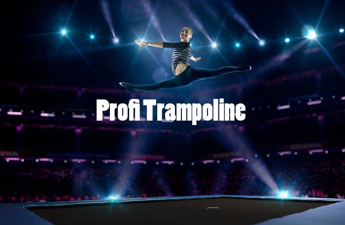 Profi Trampolin